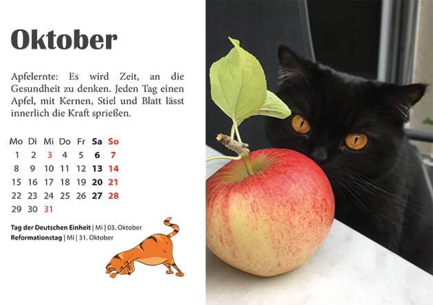Kater Kalender Oktober 2018