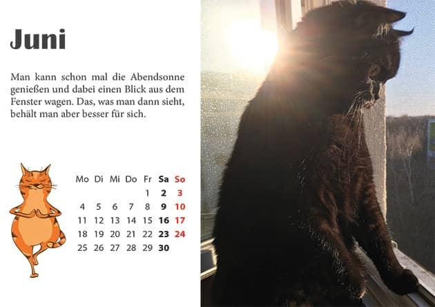 Kater Kalender Juni 2018